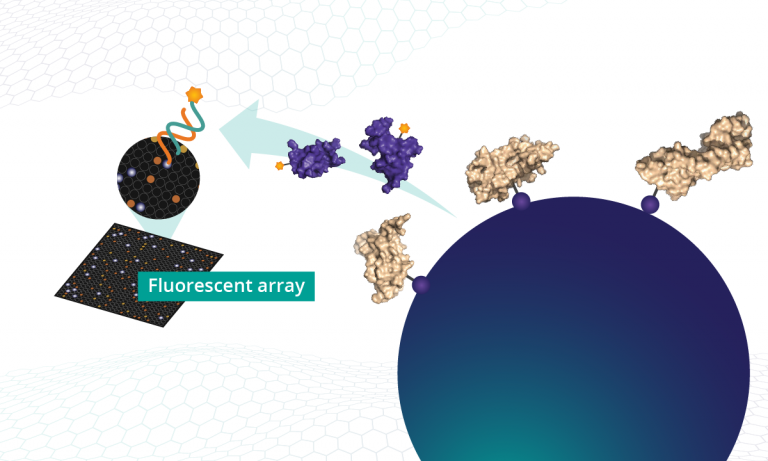 SOMAmer reagents are isolated and fluorophores measured