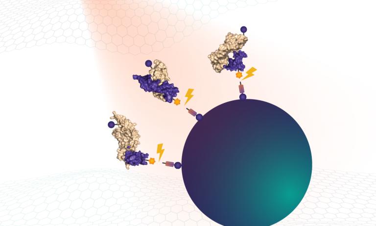 Polyanionic competitors prevent rebinding of non-specific complexes