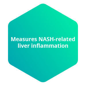 Measures NASH-related liver inflammation