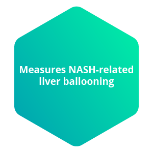 Measures NASH-related liver ballooning