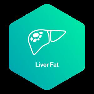 Liver Fat